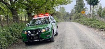 Dos sujetos fueron detenidos por robo de madera en Fundo de Liquiñe