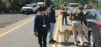 Carabineros detuvo en Coñaripe a dos sujetos por robo en Lican Ray