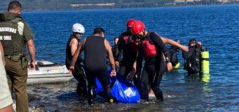 Rescatan cuerpo de jinete y caballo fallecidos en Lago Riñihue