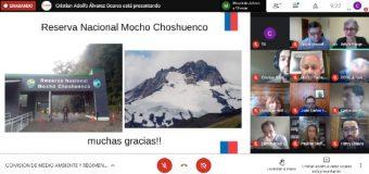 Core espera «máximo castigo» por desvío de agua glaciar en Mocho Choshuenco
