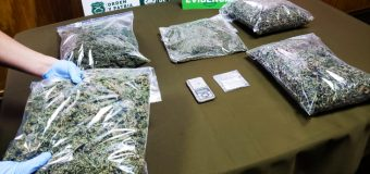 Decomisaron 1 kilo 300 gramos de marihuana en Malalhue