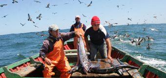 Diputado Rosas pidió al Gobierno no bloquear bono para pescadores en Tribunal Constitucional