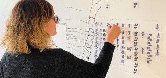 Ilustradora Científica prepara muestra de artes visuales en la Casona Cultural de Panguipulli
