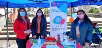 Programa Fae Pro participó en Feria Informativa organizada por Carabineros de Panguipulli